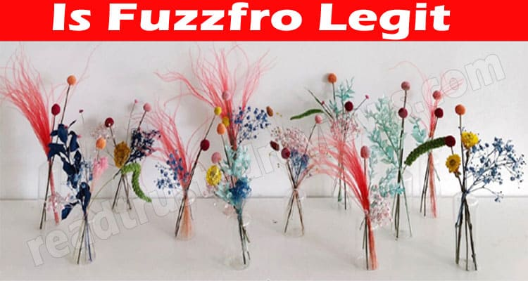 Is Fuzzfro Legit (June 2021) Let's Read Reviews Here!